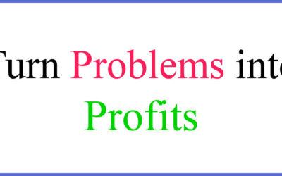 #1 Key to Turn Problems into Profits